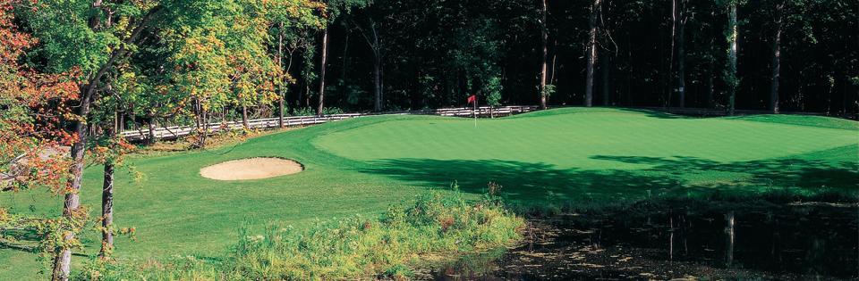 Wayne MI Golf Courses | The Woodlands of Van Buren Golf Course